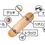 スケートボードの各部ギア解説